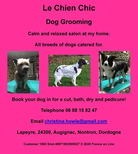 Le Chien Chic,English,Augignac,Nontron,Dordogne,dog groomer,dog grooming,cut,bath,dry,nails,pedicure
